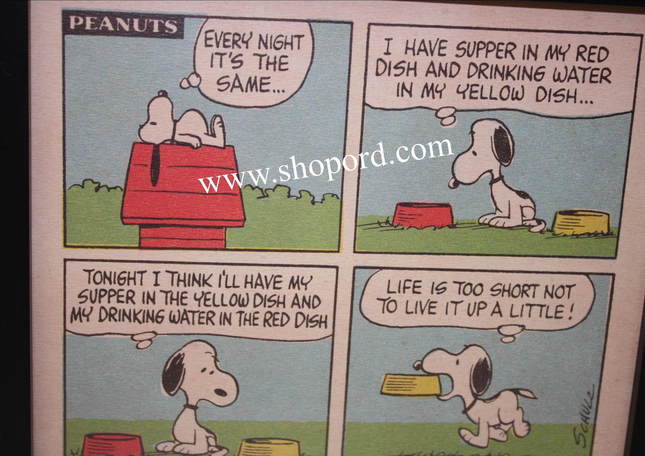 Hallmark Peanuts Snoopy And Suppertime Framed Comic Strip