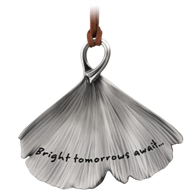 Hallmark 2018 Keepsake Bright Tomorrows Await Onrament QHX4053