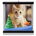 Hallmark 2014 Picture Purrfect Cat Photo Holder Ornament QGO1113