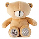 Hallmark A Bear for Snuggles