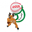 Hallmark 2015 Star Slugger Baseball Ornament QGO1399