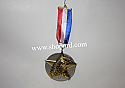 Hallmark 2002 Medal For America Ornament QX2936